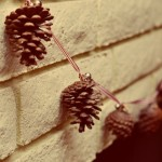 "Seventh Day: ""Found"" Pine Cone Garland"
