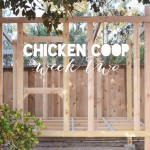 Chicken Coop Update: We Have Walls!
